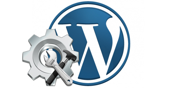 Develop a website using wordpress